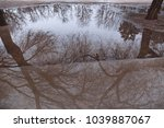 tree reflection in puddle of... | Shutterstock . vector #1039887067