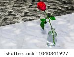 beautiful close up red roses...   Shutterstock . vector #1040341927