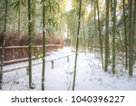 rare snowfall in kyoto's famous ... | Shutterstock . vector #1040396227