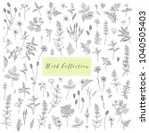 vector hand drawn collection of ... | Shutterstock .eps vector #1040505403
