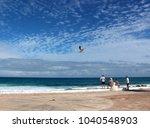 isla mujeres  quintana roo ...   Shutterstock . vector #1040548903