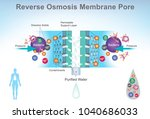 reverse osmosis  ro  is a water ... | Shutterstock .eps vector #1040686033