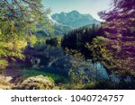 wonderful summer landscape.... | Shutterstock . vector #1040724757