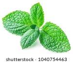 fresh apple mint. close up.... | Shutterstock . vector #1040754463