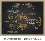 chalkboard with a diagram of... | Shutterstock .eps vector #1040772133