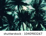 palm tree leaf background white ... | Shutterstock . vector #1040983267