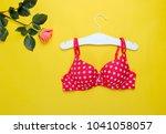 fashionable beautiful bra and... | Shutterstock . vector #1041058057