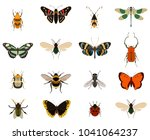 colorful butterfly and bug... | Shutterstock . vector #1041064237