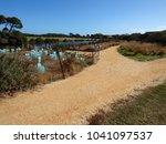 restoring environment  native... | Shutterstock . vector #1041097537