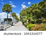 promenade among palm trees... | Shutterstock . vector #1041314377