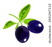 black olives on a branch.... | Shutterstock .eps vector #1041347113
