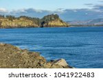 shore line with trres and... | Shutterstock . vector #1041922483
