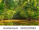 landscape of the canals inside... | Shutterstock . vector #1042229683