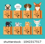 dogs and cats pets in adoption... | Shutterstock .eps vector #1042317517