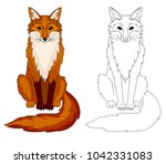 fox coloring book page  outline ... | Shutterstock .eps vector #1042331083