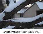 cold tree limbs covered in snow ... | Shutterstock . vector #1042337443