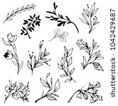 hand drawn branches  plants ... | Shutterstock .eps vector #1042429687