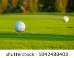 golf course marker tee off and... | Shutterstock . vector #1042488403