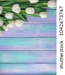 Spring White Tulips Flower On...
