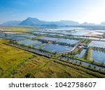 aerial view of the prawn farm... | Shutterstock . vector #1042758607
