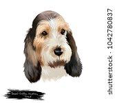 grand basset griffon vend en or ... | Shutterstock . vector #1042780837