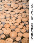 firewood for the winter  stacks ... | Shutterstock . vector #1042960423
