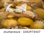 closed up of group yellow... | Shutterstock . vector #1042973437