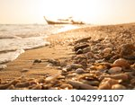 sea shells and coral fragments... | Shutterstock . vector #1042991107