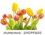 Small photo of Bouquet of colorful tulips isolated on white background