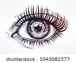 beautiful realistic eye of a... | Shutterstock .eps vector #1043082577