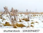 thick fog early cloudy winter... | Shutterstock . vector #1043096857
