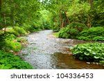 Small Clean River And Green...