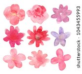 floral set. collection with... | Shutterstock . vector #1043455993