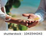 wedding rings  jewelry and... | Shutterstock . vector #1043544343