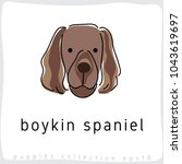 boykin spaniel   dog breed... | Shutterstock .eps vector #1043619697