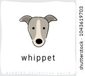 whippet   dog breed collection  ... | Shutterstock .eps vector #1043619703