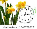 daylight saving time. dst. wall ... | Shutterstock . vector #1043733817