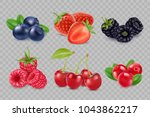 set of juicy berries. 3d vector ... | Shutterstock .eps vector #1043862217