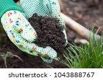 woman holding fertile earth...   Shutterstock . vector #1043888767