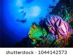 underwater world diving... | Shutterstock . vector #1044142573