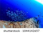 Small photo of Underwater deep landscape