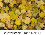 background group autumn orange...   Shutterstock . vector #1044164113
