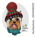 vector dog with knitted hat and ... | Shutterstock .eps vector #1044330253