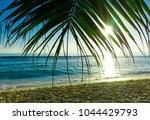 palm scene jungle  | Shutterstock . vector #1044429793