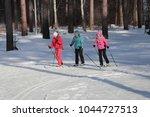 city of zavodoukovsk  tyumen... | Shutterstock . vector #1044727513