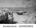 old photo beautiful seashore... | Shutterstock . vector #1044833803
