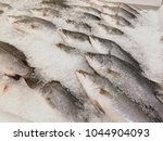 many fishes in iced for sale at ... | Shutterstock . vector #1044904093