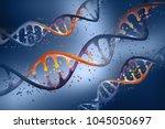dna helix. genetic engineering. ... | Shutterstock . vector #1045050697