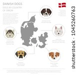 dogs by country of origin.... | Shutterstock .eps vector #1045260763