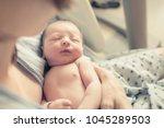 mother holding her new born... | Shutterstock . vector #1045289503